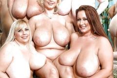 Kies de dikke borsten